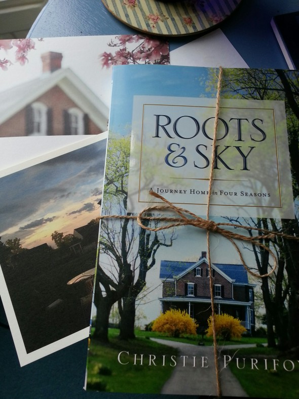 roots and sky 2